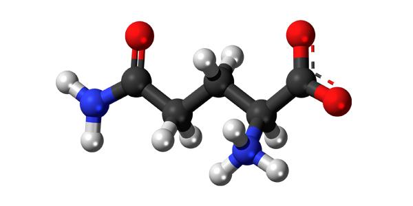 Аргинин - Што е тоа и какво дејство има овој суплемент?